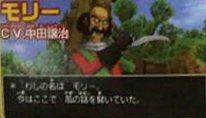 Dragon Quest VIII (5)