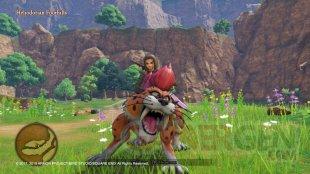 Dragon Quest XI S screenshot (3)
