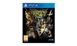 Dragon's Crown Pro PS4 Annonce Occident (6)