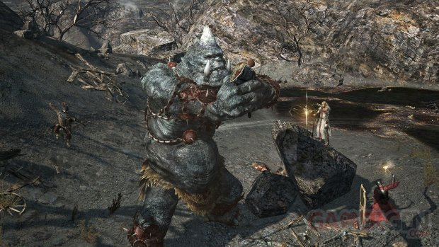 Dragon's Dogma Online monstres images 7