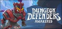 Dungeon defenders awaken