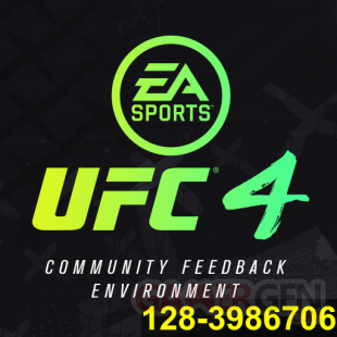 EA Sports UFC 4 Community Feedback Environment 1