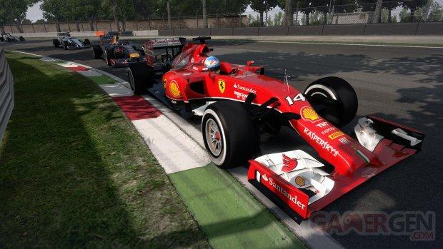 F1 2014 31 07 2014 screenshot (8)