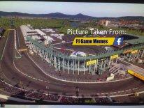 F1 2015 16 02 2015 leak 1