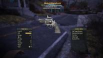 Fallout 76 Survie 3