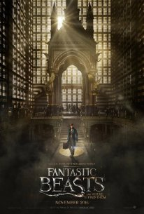 Fantastic Beasts and Where to find them Animaux Fantastiques poster