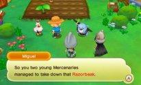 Fantasy Life screenshot 16