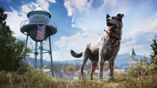 Far Cry 5 Screen 2
