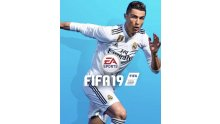 Fifa 19 jaquette image