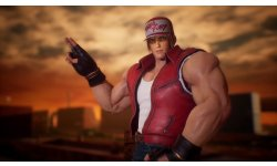 Fighting EX Layer Terry Bogard 23 03 2019