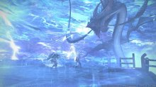 Final-Fantasy-XIV-A-Realm-Reborn-Defenders-of-Eorzea_14-06-2014_screenshot (8)