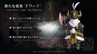 Final Fantasy XIV FFXIV Shadowbringers live screen 14 23 03 2019