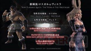 Final Fantasy XIV FFXIV Shadowbringers live screen 23 23 03 2019