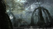 Final Fantasy XIV Heavensward 18 10 2014 screenshot 3