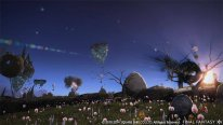 Final Fantasy XIV Heavensward 25 10 2014 screenshot 1 (2)