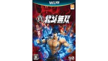 Fist of the North wii