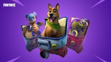 Fortnite_patch-notes_v6-00_overview-text-v6-00_BR06_Social_Pets_v2-1920x1080-ff88afea615298bd9168ed63b2fa757326a7aa2f
