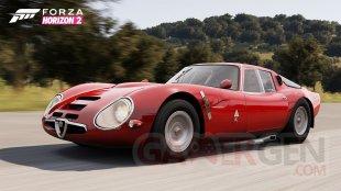 Forza Horizon 2 30 07 2014 screenshot (1)