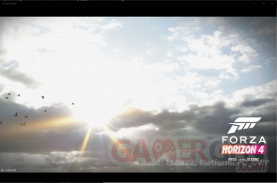 Forza Horizon 4 pic leak (9)