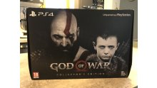 godofwarcollector1