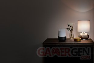 Google Home1