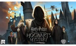 Harry Potter Hogwarts Mystery Art