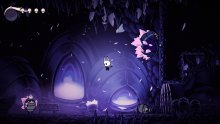 Hollow-Knight-08-22-03-2019