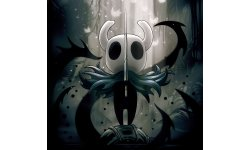 Hollow Knight 10 11 2018