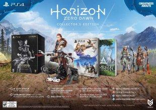 Horizon Zero Dawn Editions limitee et collector image (2)