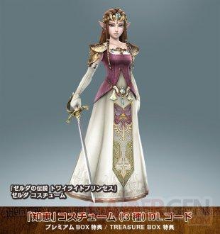 Hyrule Warriors 27.06.2014  DLC (3)