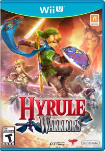 hyrule warriors cover jaquette boxart wiiu