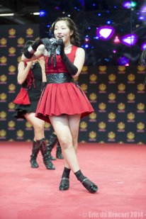 Japan Expo 2014 8795