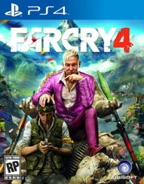 Jaquette PS4 Far Cry 4