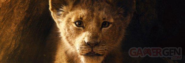 Le Roi Lion image