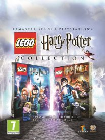 LEGO Harry Potter Collection KEY ART