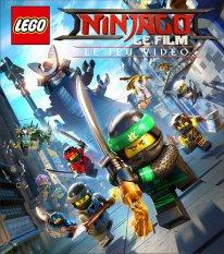 LEGO Ninjago Le Film le jeu vidéo key art