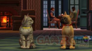 Les Sims 4 Chiens et Chats pic 2