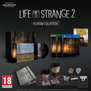 Life is Strange 2 édition boite physique collector