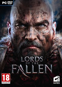 Lords of the Fallen jaquette 1