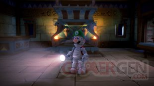 Luigi's Mansion 3 18 12 2019 Pack Multijoueur (3)