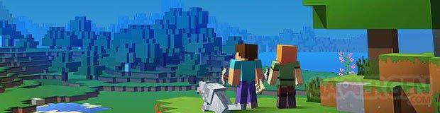 Minecraft Bannière