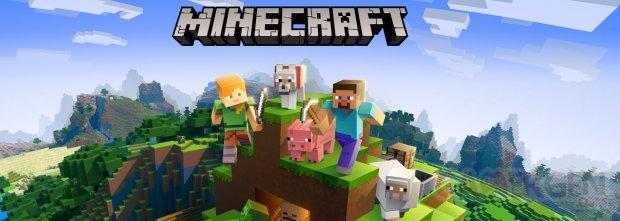 Minecraft image 1