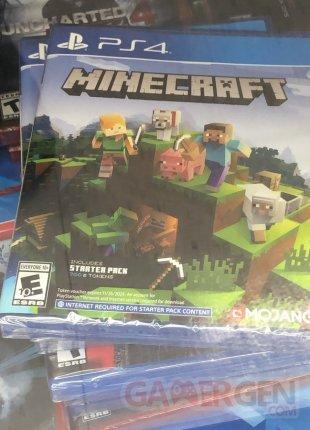 Minecraft PS4 Bedrock Edition 1