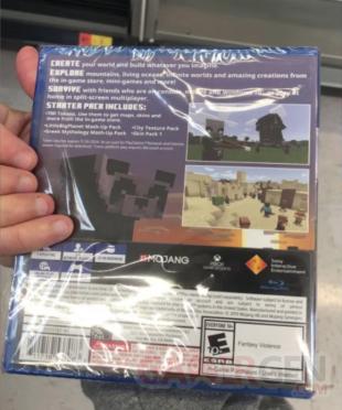 Minecraft PS4 Bedrock Edition 2