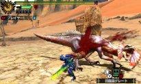 monster hunter 4 ultimate  (46)