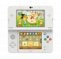 Monster Hunter X 3DS Colector theme (1)
