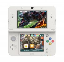 Monster Hunter X 3DS Colector theme (3)