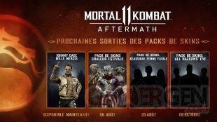 Mortal Kombat 11 Aftermath skins roadmap