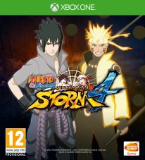 Naruto Shippuden Ultimate Ninja Storm 4 jaquette (7)