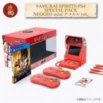 Neo Geo Samurai Shodown Limited Edition (9)